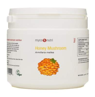 Honey mushroom powder